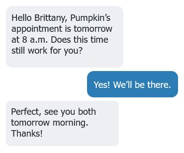 example text bubbles of an appointment confirmation